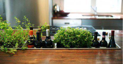 18b-mini-indoor-herb-garden-wine-drop-box-in-wood-countertop-550x288.jpg