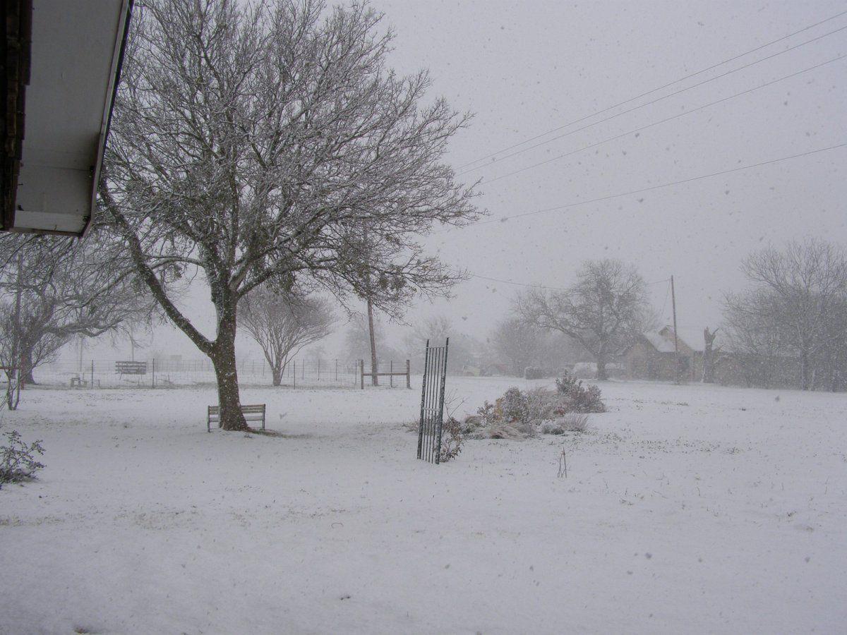 2-28-10 Snow 2.jpg