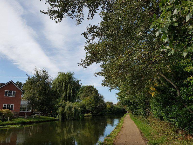canal walk 6.jpg