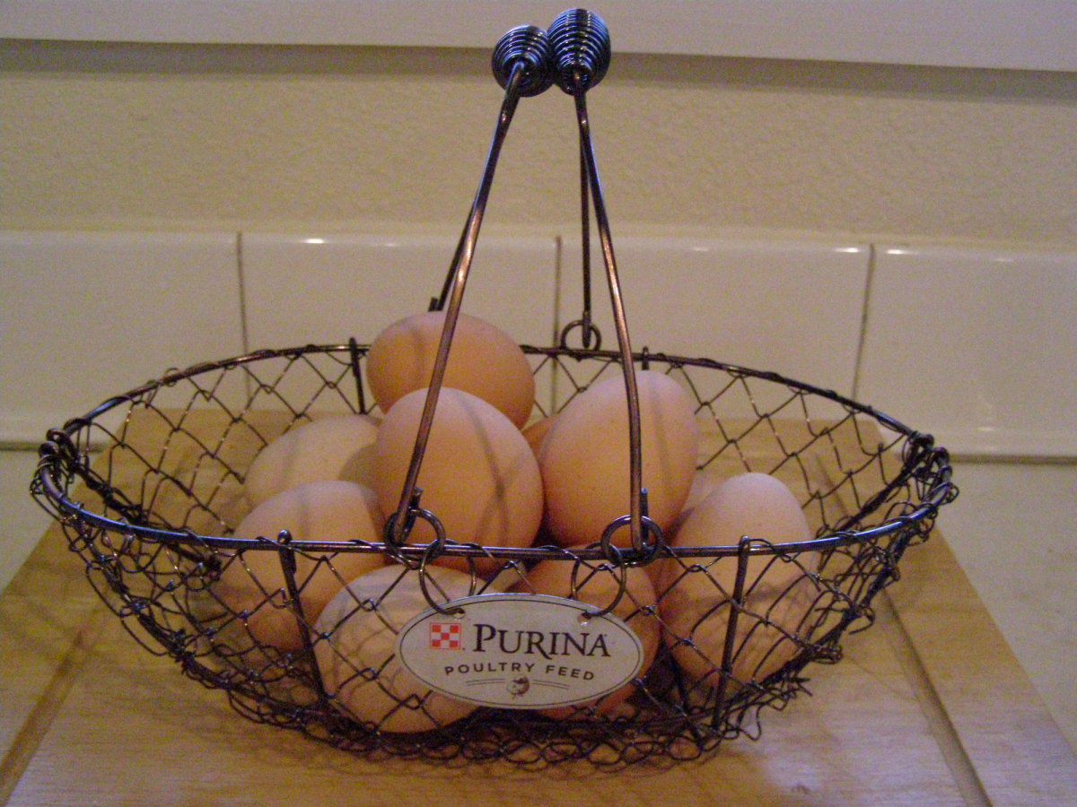 egg basket.jpg
