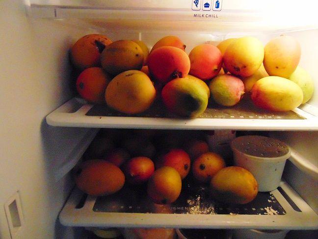 fridgemangoes.JPG