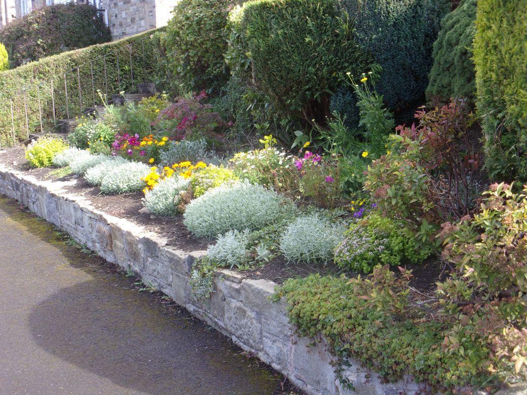 Front Garden (1).JPG