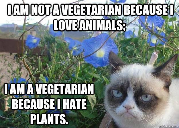 Funny Garden Memes - Grumpy Cat Vegetarian.jpg