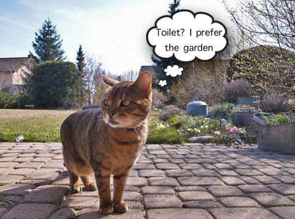 Funny Garden Memes - Toilet I prefer the garden .jpg