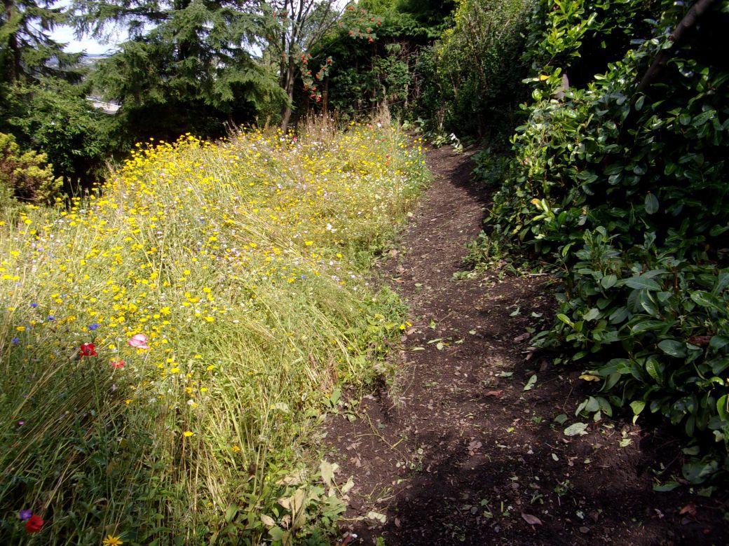 Garden_004.JPG