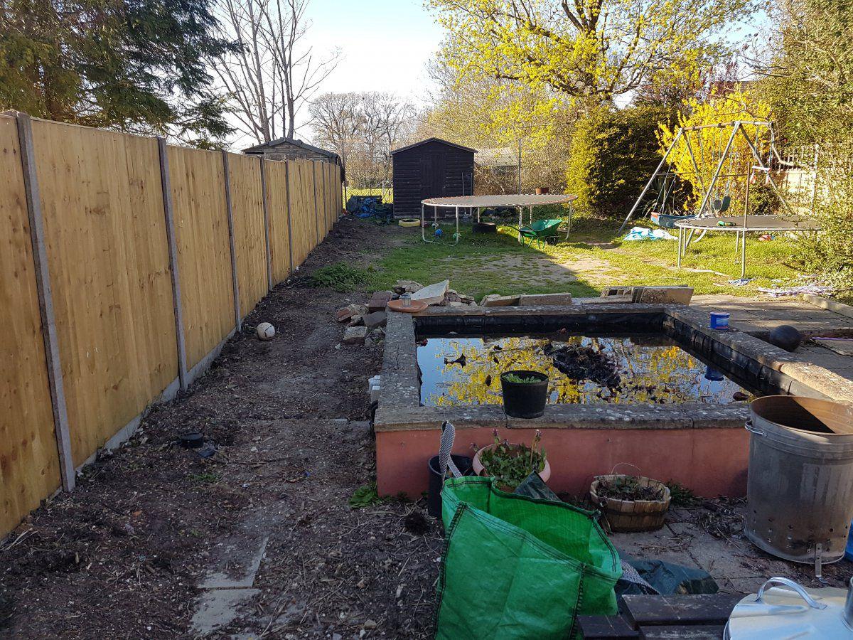 garden_low.jpg