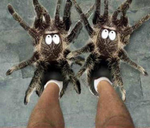 gift spidersnewslippers.jpg