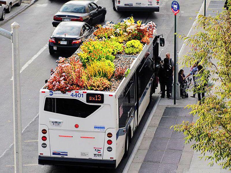growbus-ed01.jpg
