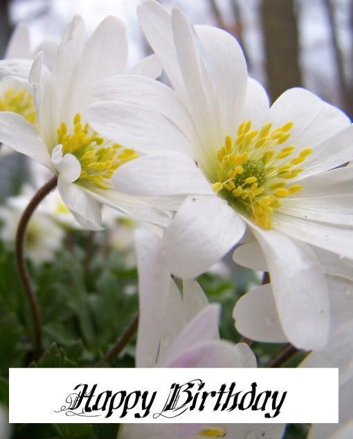 Happy Birthday -white.JPG