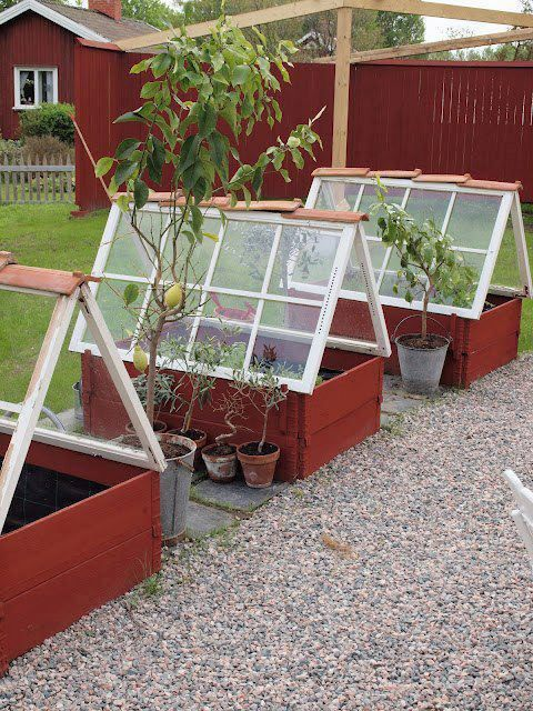 Easy diy mini greenhouse from reclaimed windows for Reclaimed window greenhouse