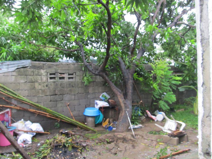 IMG_4927 typhoon glenda.JPG