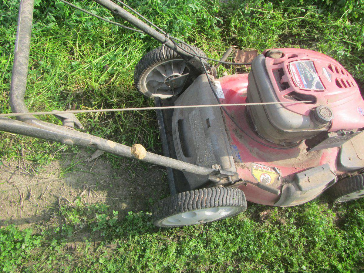 mowing alfalfa.JPG
