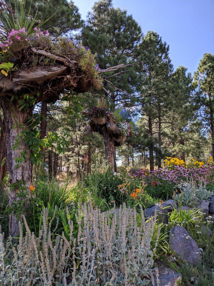 Stumperies.. | Page 4 | Gardening Forums