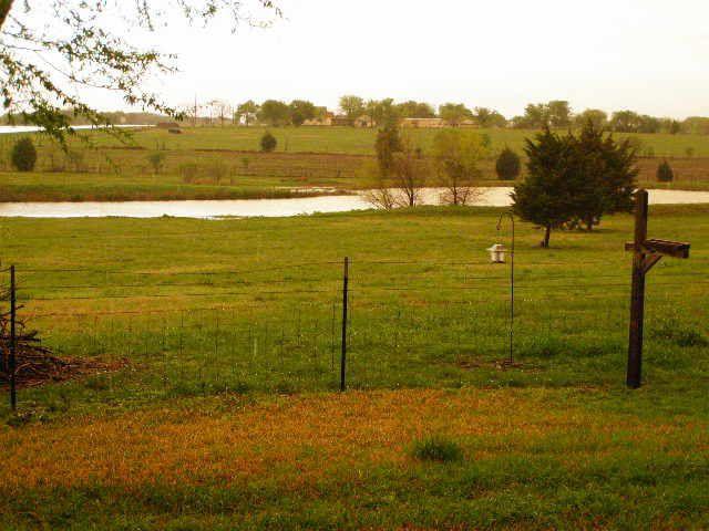 pasture-light-1-jpg.24004