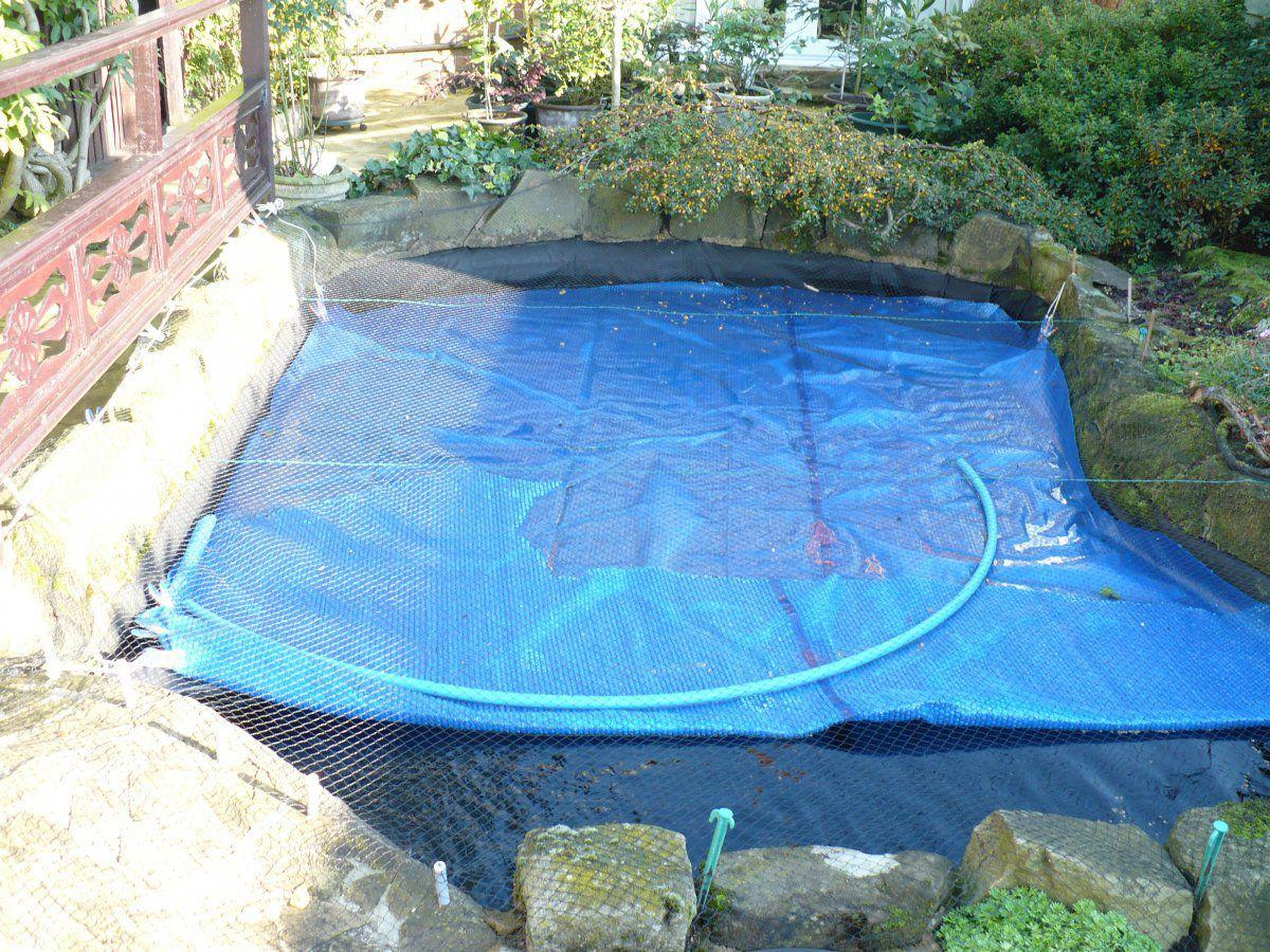 Pool cover.JPG