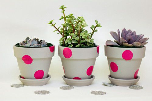 pots pink spot.jpg