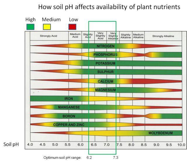 soil_ph_nutrient_availability.jpg