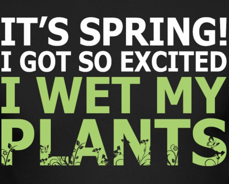 spring wet my plants.jpg
