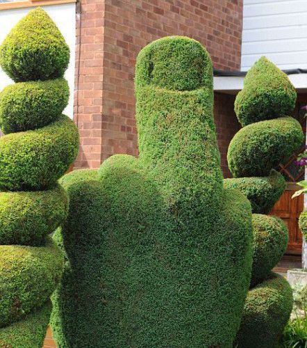 Topiary designs gardening forums for Topiary garden designs