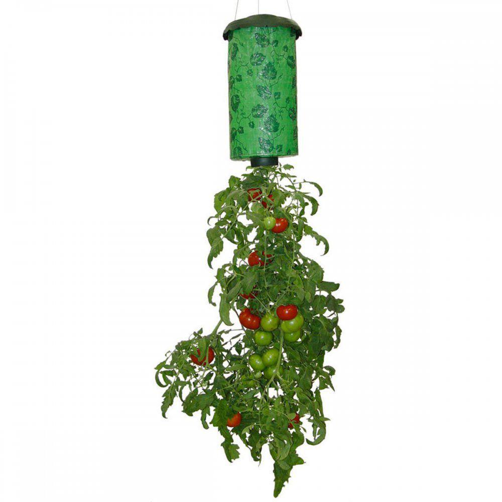 topsy-turvy-tomato_2.jpg