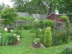 Back yard 2 2015 016.JPG